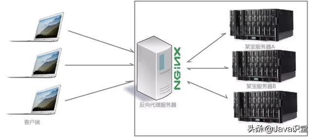 Nginx的作用详解,为什么在web服务器中nginx的比例越来越高?