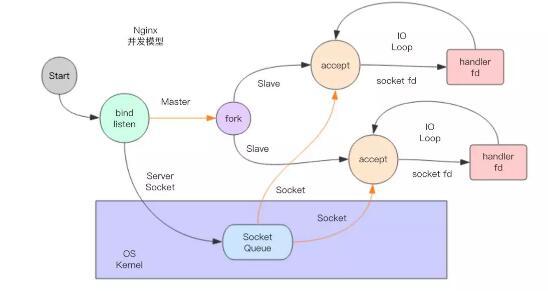 RPC 服务器之【多进程描述符传递】高阶模型