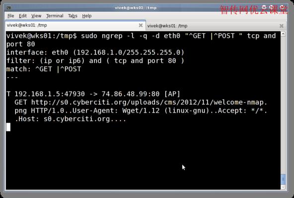 Linux网络数据包分析工具