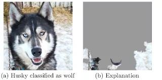 论机器学习模型的可解释性