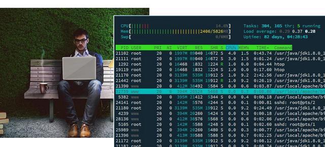 自定义构建交互式SSH应用程序,以Python为例
